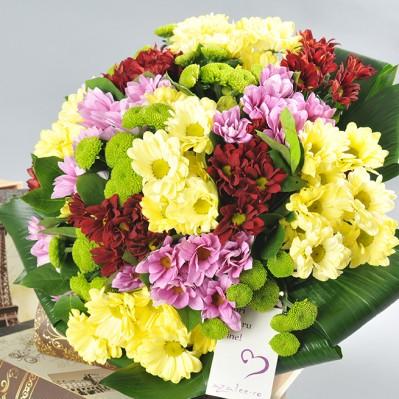 Festivalul Fericirii Florarie Iasi