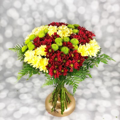 Culori de Toamna Florarie Iasi