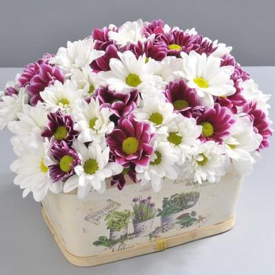 Dulce si Atat Florarie Iasi