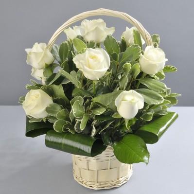 Gest Nobil Florarie Iasi