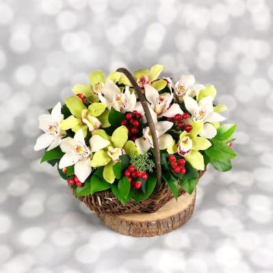 Extravaganta Florarie Iasi