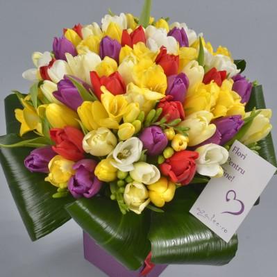 Florarie Iasi O Zi Minunata