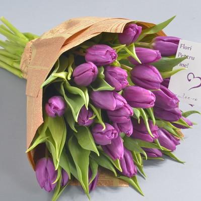 Purple Love Florarie Iasi