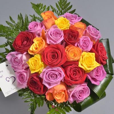 Colour Delight Florarie Iasi