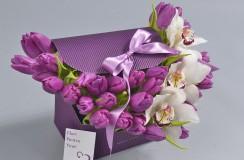 Lalele Florarie Iasi
