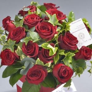 Trandafiri Florarie Online Iasi