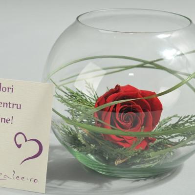 Aranjament Floral For Keeps