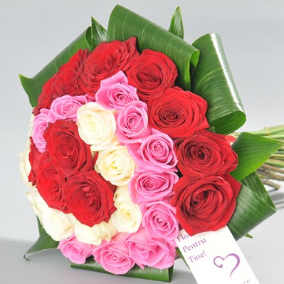 Rose Joy Florarie Iasi