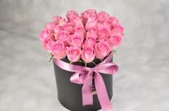 Trandafriri Florarie Iasi