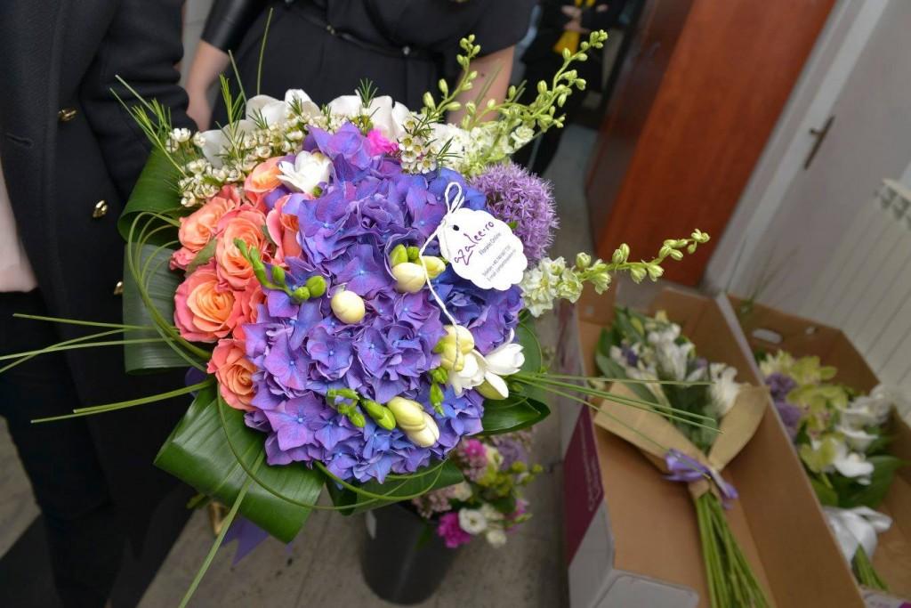 Hortensie Florarie Online Iasi