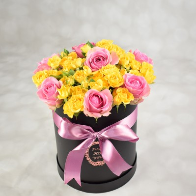 Celebration Florarie Iasi