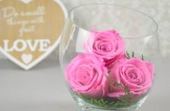 Trandafiri Criogenati Florarie Iasi