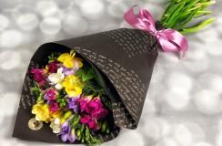 Frezii Florarie Iasi