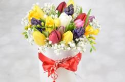 Aranjament Florarie Iasi