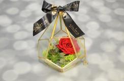 Aranjament Criogenat Florarie Iasi