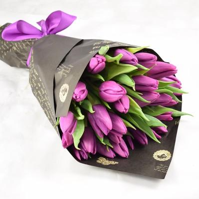 Lalele Mov Florarie Iasi