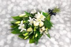 Crini Florarie Iasi