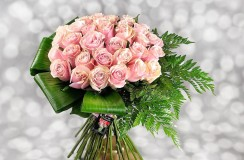 Tradafiri Roz Florarie Iasi