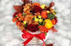 Florarie Iasi