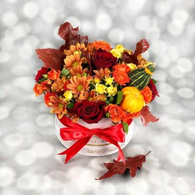 Aranjament Crizanteme Toamna Florarie Iasi