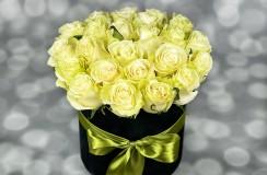 Trandafiri Albi Florarie Iasi