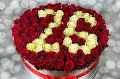 Trandafiri Cifra 26 Florarie Iasi