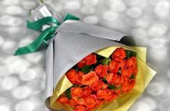 Miniroze Portocalii florarie iasi